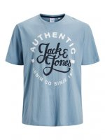 T-shirt JJMOON Faded denim