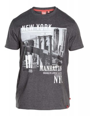 T-shirt Wesley New York Grå